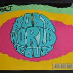 boboworldtour-book